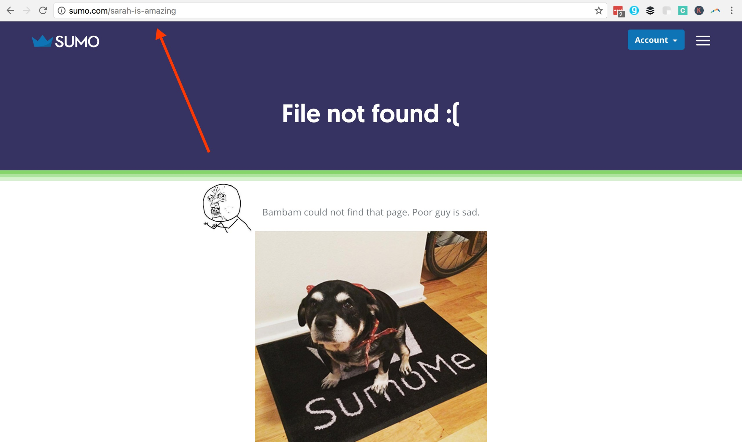 Screenshot of the Sumo 404 page