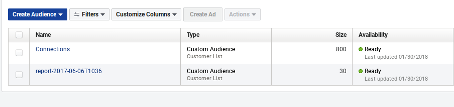Screenshot showing facebook ads audiences