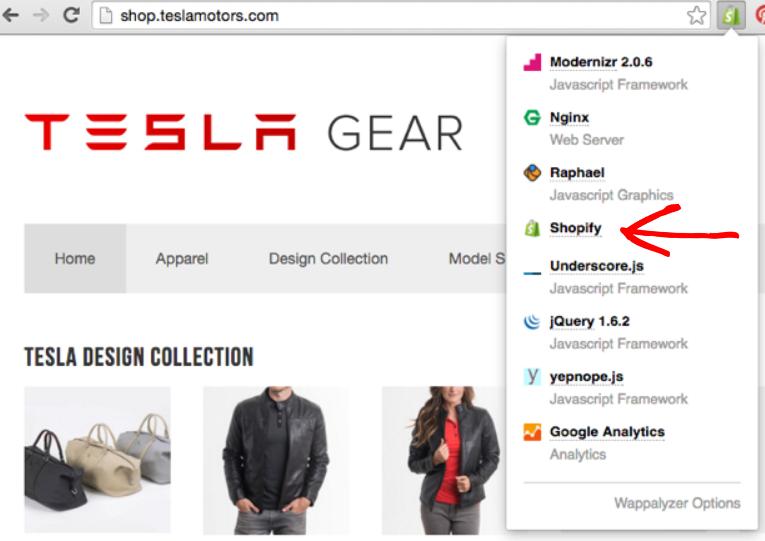 Screenshot showing Tesla gear