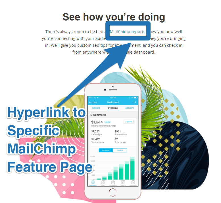Screenshot showing a feature by Mailchimp