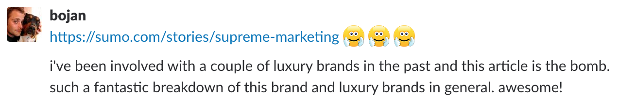 Screenshot of a review on the supreme marketing article