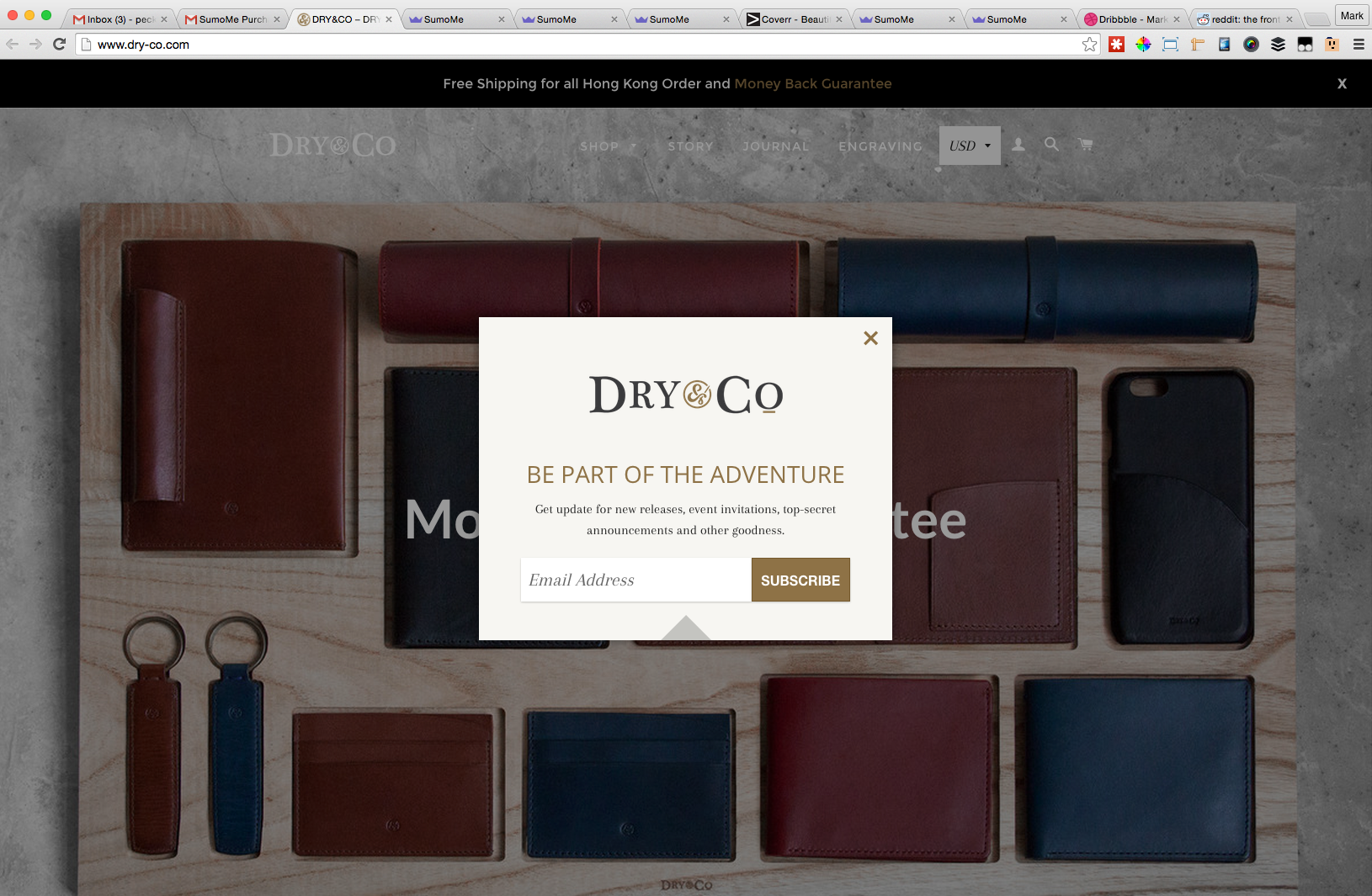 Screenshot showing a newsletter subscription box on dry-co