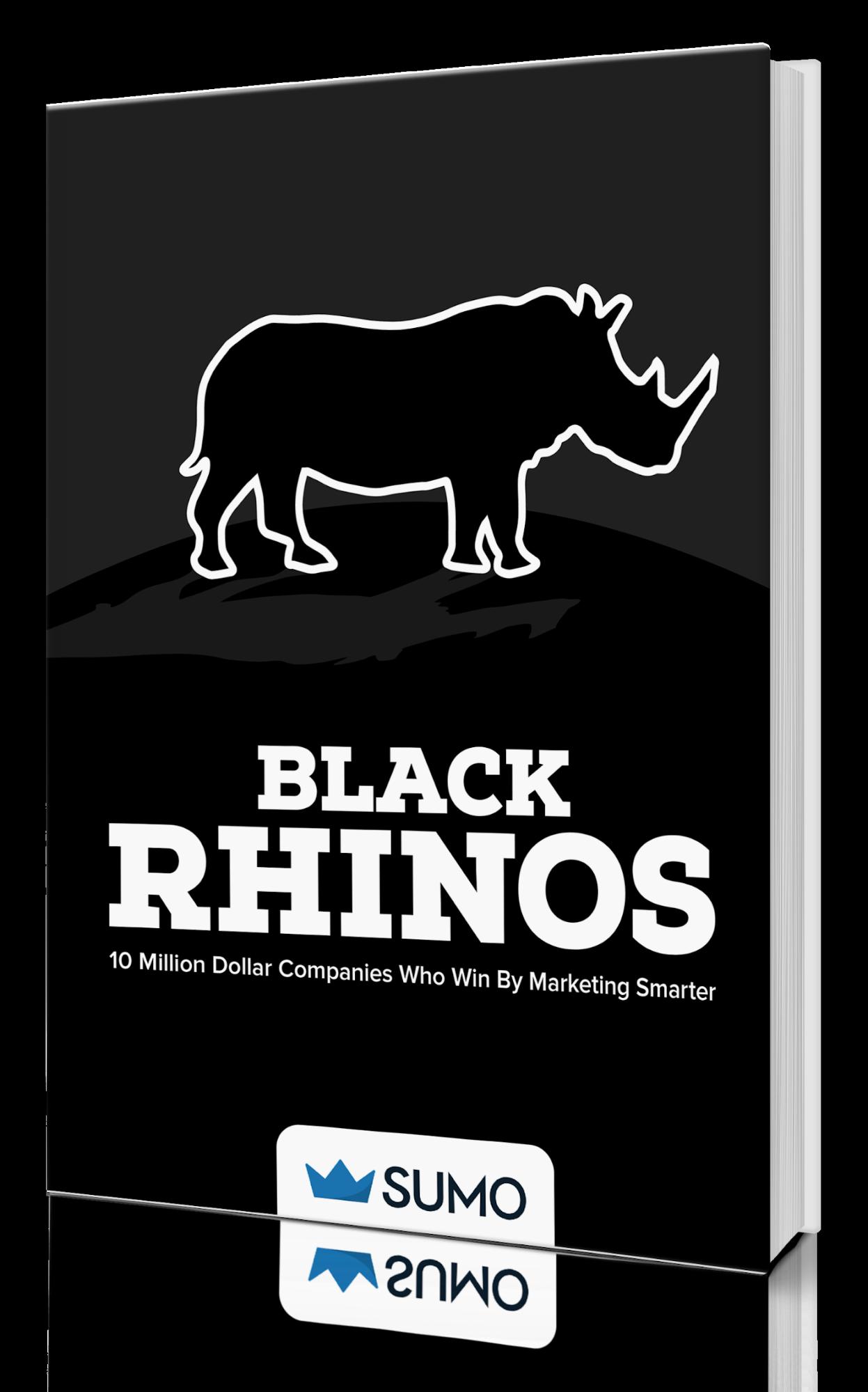 Book cover for the black rhino book