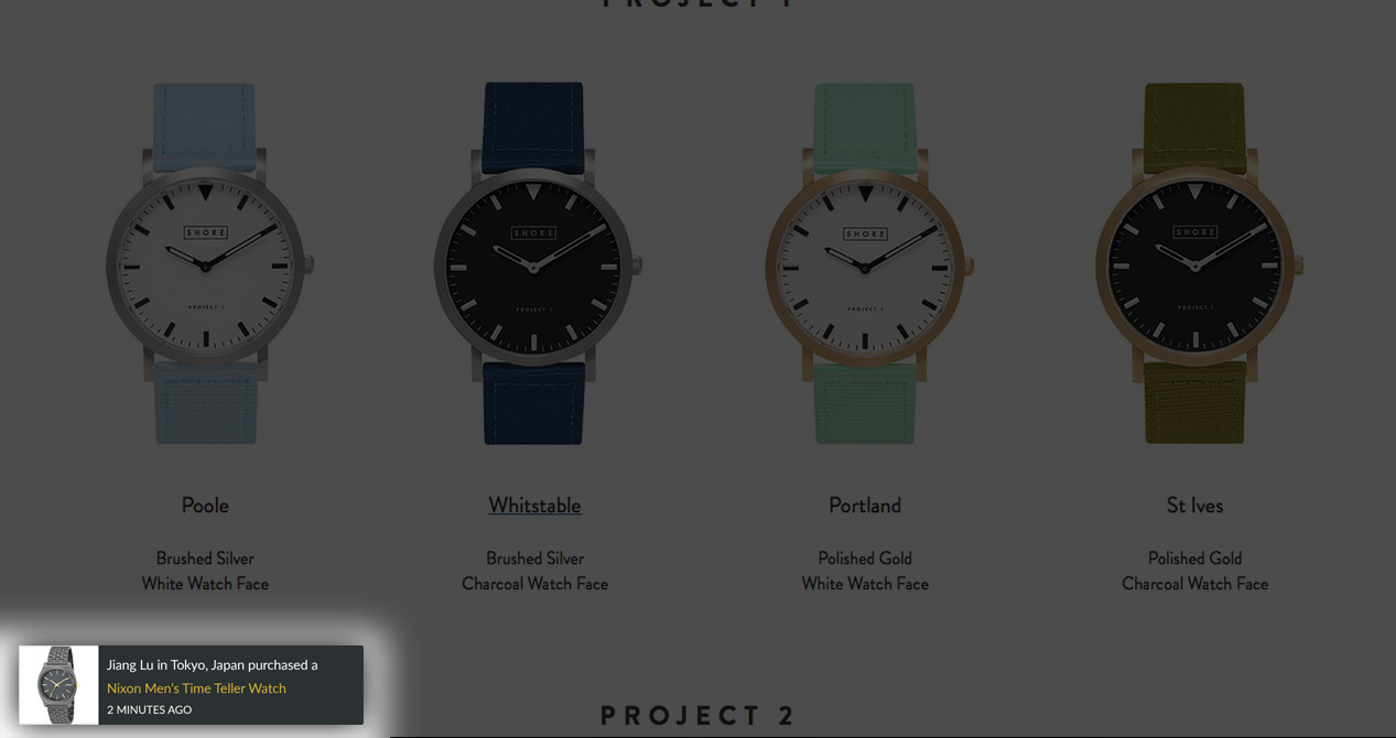 Screenshot showing a box on the bottom left that alerts the user when a purchase has been made, building social proof