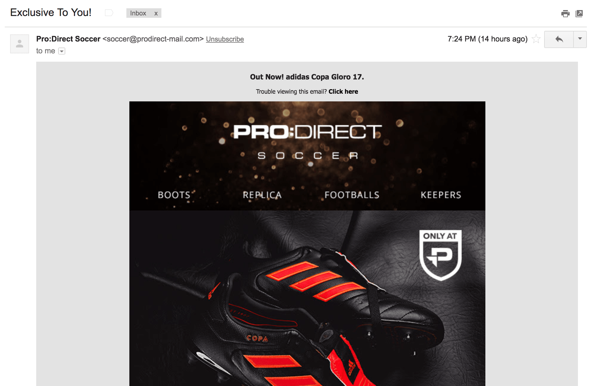 Screenshot showing an email by ProDirect