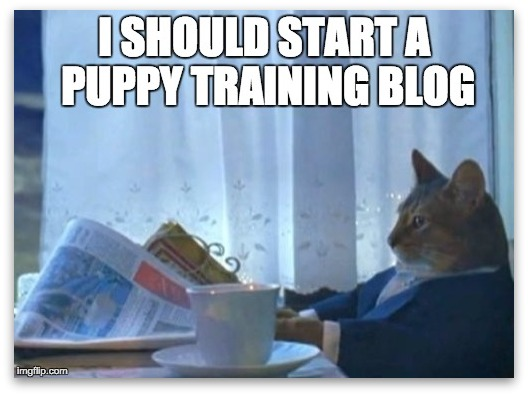puppy training thinking