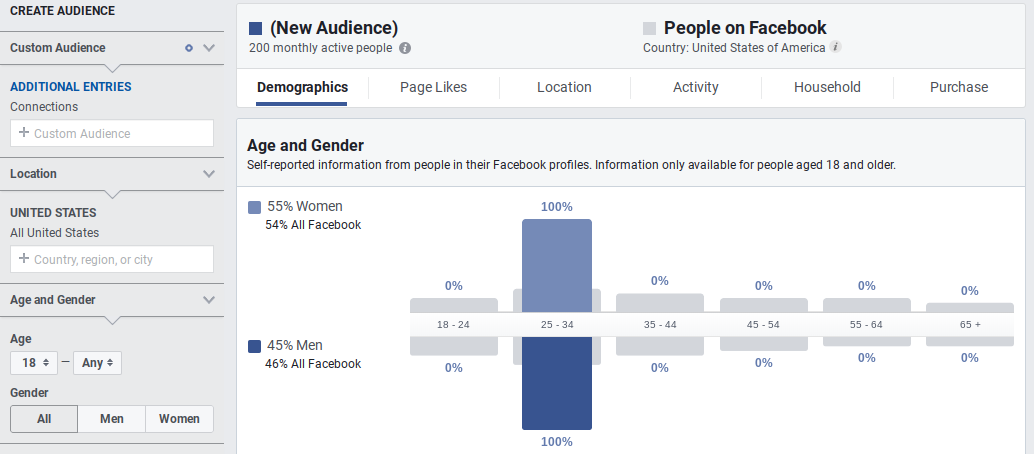 Screenshot showing facebook audience analytics
