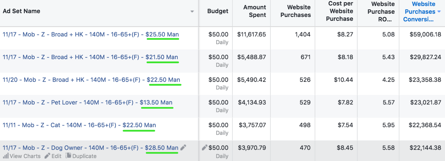Screenshot showing different ad sets and different variables on the Facebook Ads dashboard
