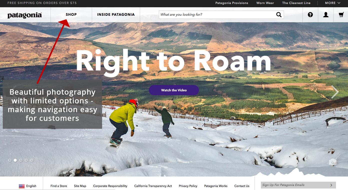 Screenshot showing patagonia
