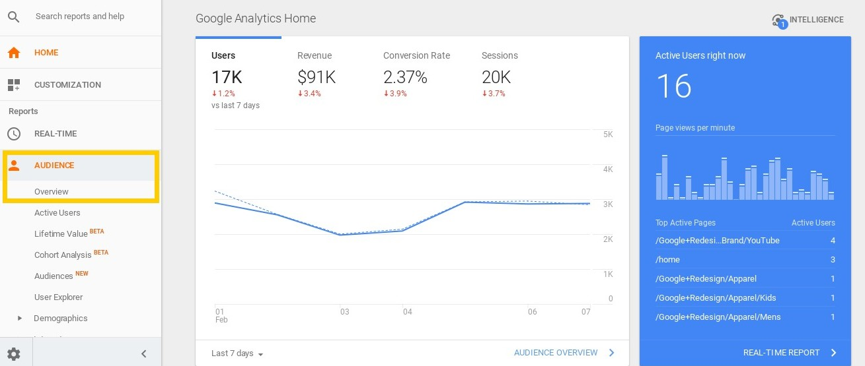 Screenshot showing google analytics audience demographics