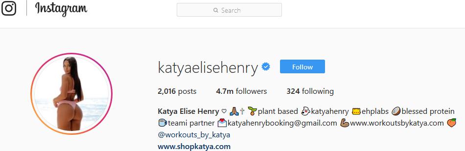 Screenshot showing Instagram profile of katya elise henry